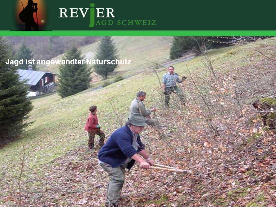 Erstellt: 11.10.2005Folie 17 Jagd ist angewandter Naturschutz