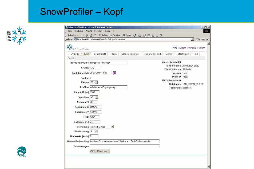 SnowProfiler – Kopf