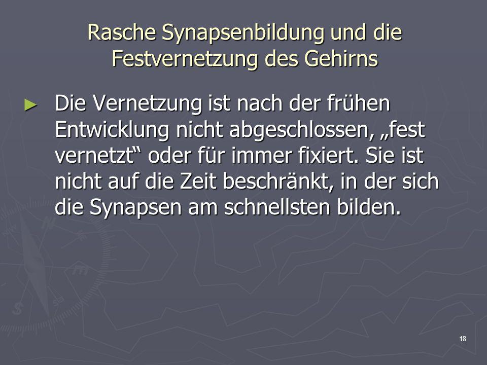 18 Rasche Synapsenbildung und die Festvernetzung des Gehirns Die Vernetzung ist nach der frühen Entwicklung nicht abgeschlossen, fest vernetzt oder fü