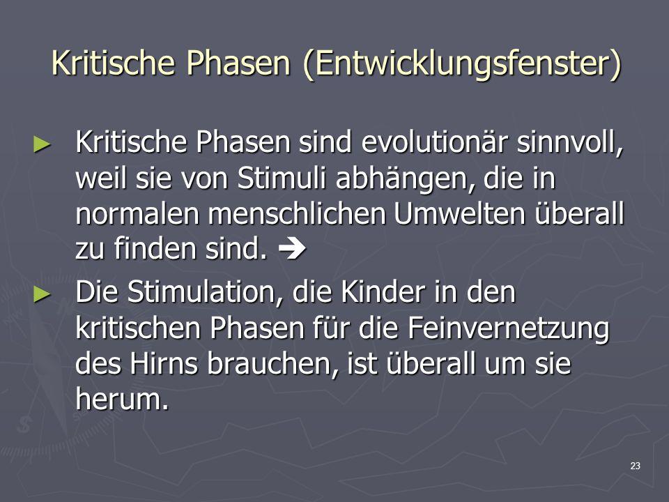 23 Kritische Phasen (Entwicklungsfenster) Kritische Phasen sind evolutionär sinnvoll, weil sie von Stimuli abhängen, die in normalen menschlichen Umwe