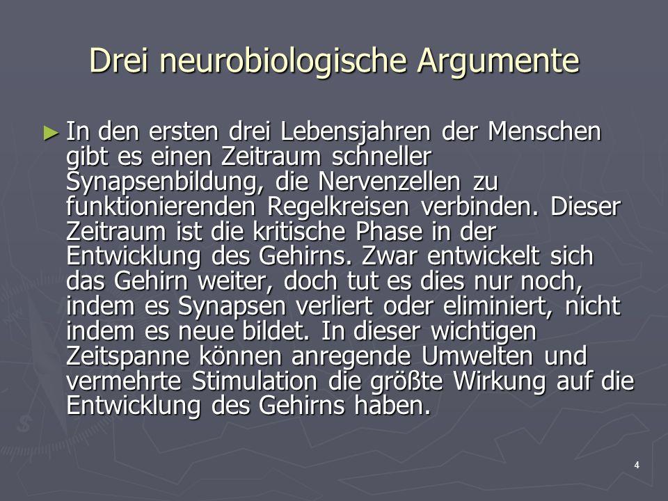 4 Drei neurobiologische Argumente In den ersten drei Lebensjahren der Menschen gibt es einen Zeitraum schneller Synapsenbildung, die Nervenzellen zu f