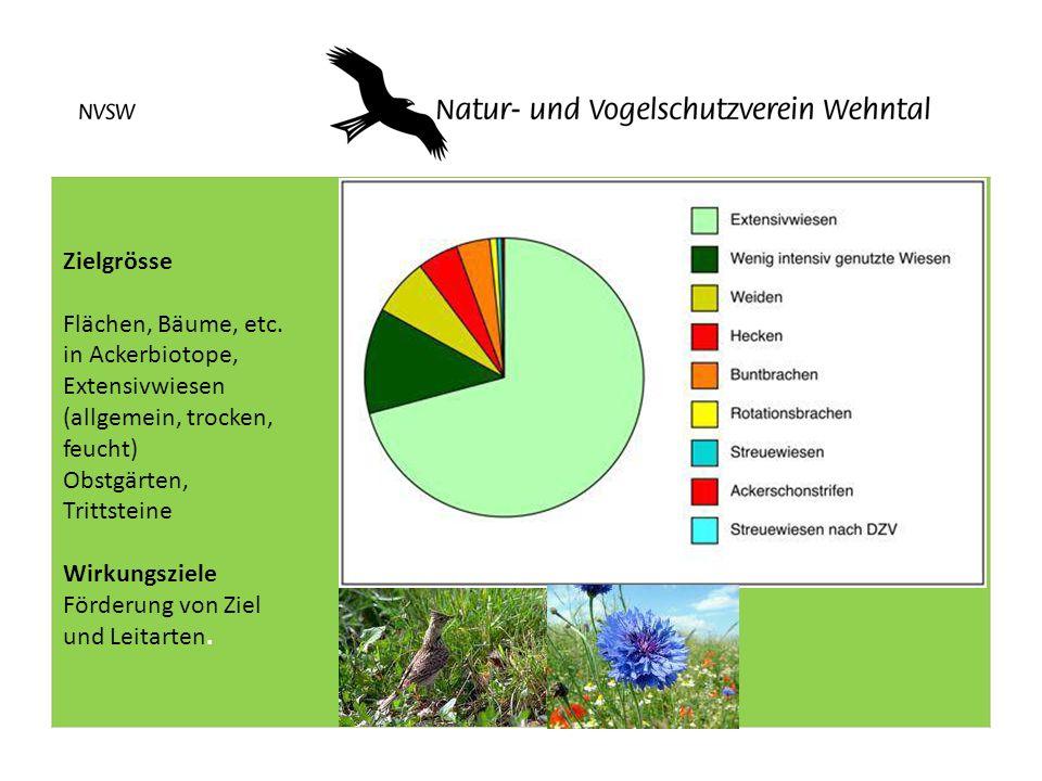 Zielgrösse Flächen, Bäume, etc. in Ackerbiotope, Extensivwiesen (allgemein, trocken, feucht) Obstgärten, Trittsteine Wirkungsziele Förderung von Ziel