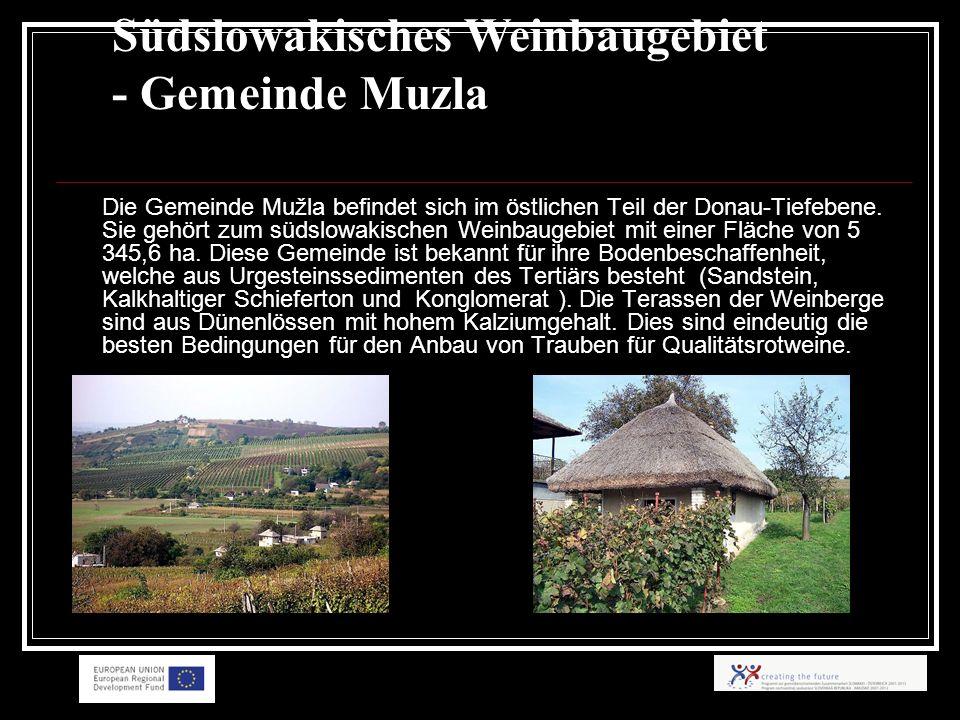 Die Gemeinde Mužla befindet sich im östlichen Teil der Donau-Tiefebene.