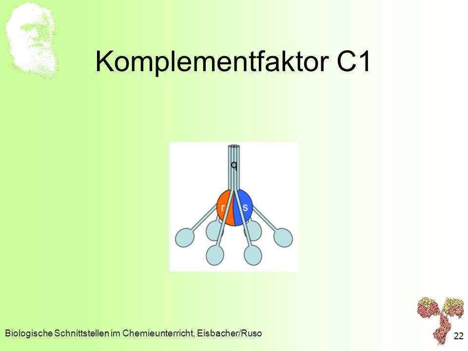 Komplementfaktor C1 Biologische Schnittstellen im Chemieunterricht, Eisbacher/Ruso 22