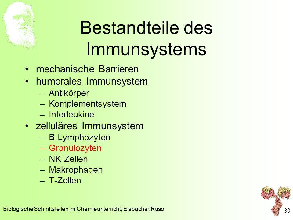 Bestandteile des Immunsystems mechanische Barrieren humorales Immunsystem –Antikörper –Komplementsystem –Interleukine zelluläres Immunsystem –B-Lympho