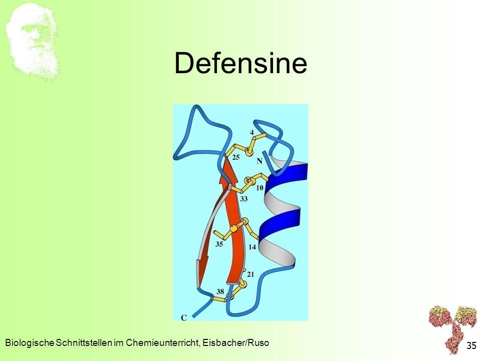Defensine Biologische Schnittstellen im Chemieunterricht, Eisbacher/Ruso 35