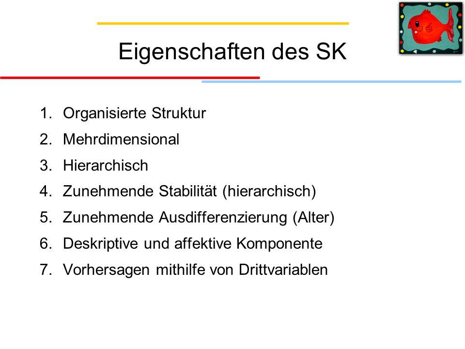 Eigenschaften des SK 1. Organisierte Struktur 2. Mehrdimensional 3. Hierarchisch 4. Zunehmende Stabilität (hierarchisch) 5. Zunehmende Ausdifferenzier