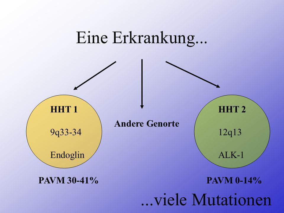Eine Erkrankung... HHT 1 9q33-34 Endoglin HHT 2 12q13 ALK-1 Andere Genorte...viele Mutationen PAVM 30-41%PAVM 0-14%