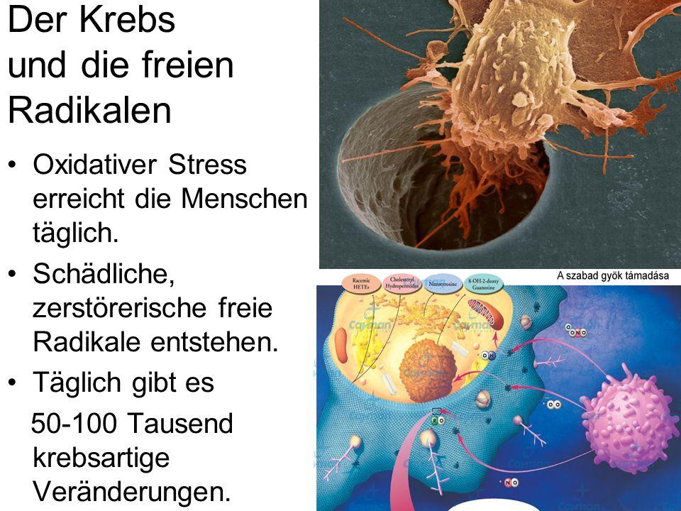 Der Krebs und die freien Radikalen Oxidativer Stress erreicht die Menschen täglich. Schädliche, zerstörerische freie Radikale entstehen. Täglich gibt
