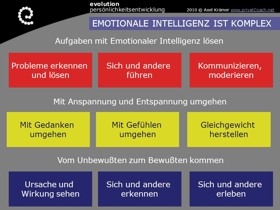 Probleme erkennen und lösen Sich und andere führen Kommunizieren, moderieren Mit Gedanken umgehen Mit Gefühlen umgehen Gleichgewicht herstellen Ursach