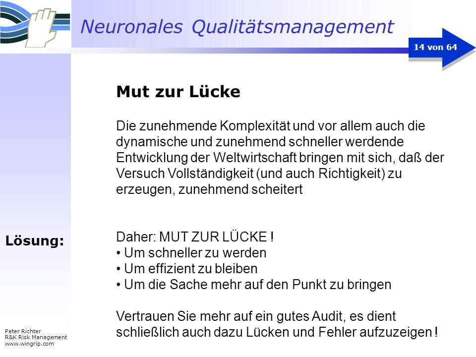 Neuronales Qualitätsmanagement Peter Richter R&K Risk Management www.wingrip.com 14 von 64 Die zunehmende Komplexität und vor allem auch die dynamisch