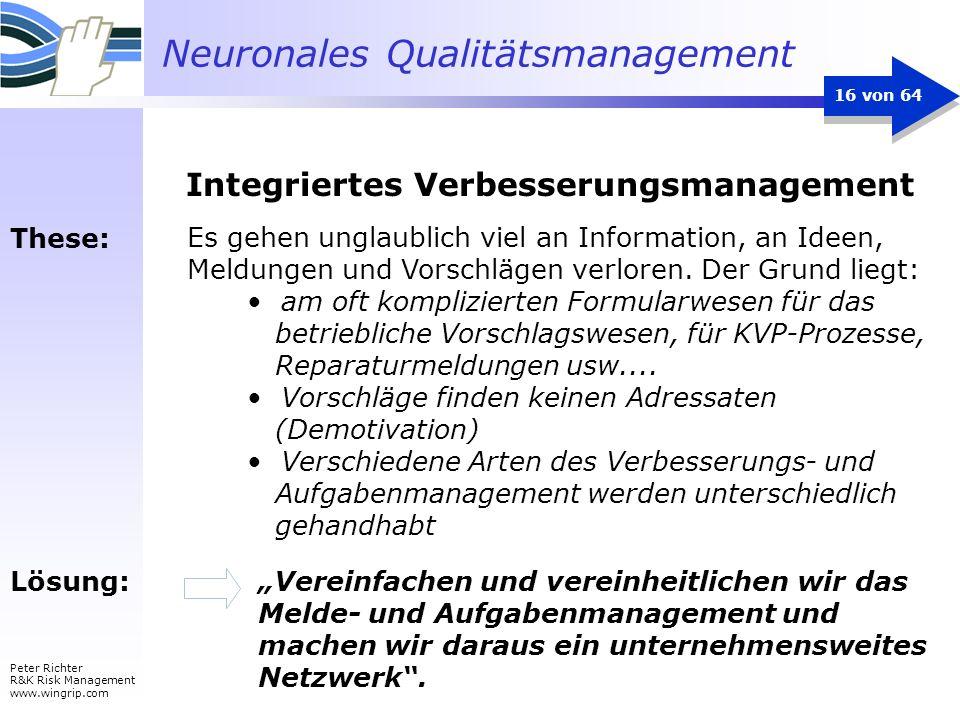 Neuronales Qualitätsmanagement Peter Richter R&K Risk Management www.wingrip.com 16 von 64 Es gehen unglaublich viel an Information, an Ideen, Meldung