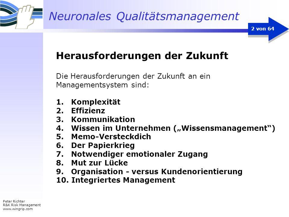 Neuronales Qualitätsmanagement Peter Richter R&K Risk Management www.wingrip.com 2 von 64 Die Herausforderungen der Zukunft an ein Managementsystem si