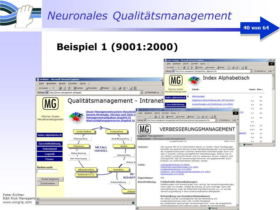 Neuronales Qualitätsmanagement Peter Richter R&K Risk Management www.wingrip.com 40 von 64 Beispiel 1 (9001:2000)