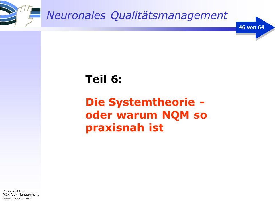 Neuronales Qualitätsmanagement Peter Richter R&K Risk Management www.wingrip.com 46 von 64 Teil 6: Die Systemtheorie - oder warum NQM so praxisnah ist