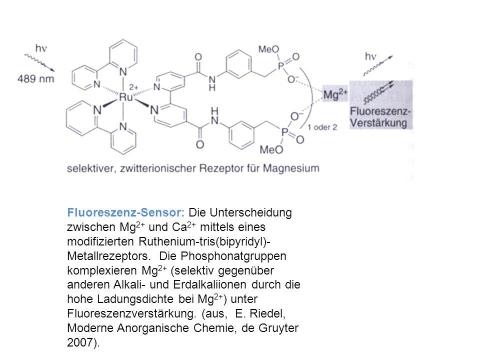Fluoreszenz-Sensor: Die Unterscheidung zwischen Mg 2+ und Ca 2+ mittels eines modifizierten Ruthenium-tris(bipyridyl)- Metallrezeptors. Die Phosphonat