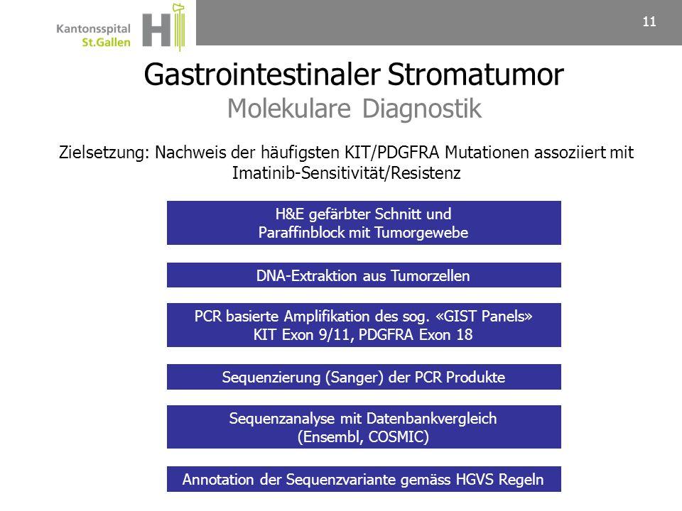 11 H&E gefärbter Schnitt und Paraffinblock mit Tumorgewebe DNA-Extraktion aus Tumorzellen PCR basierte Amplifikation des sog. «GIST Panels» KIT Exon 9