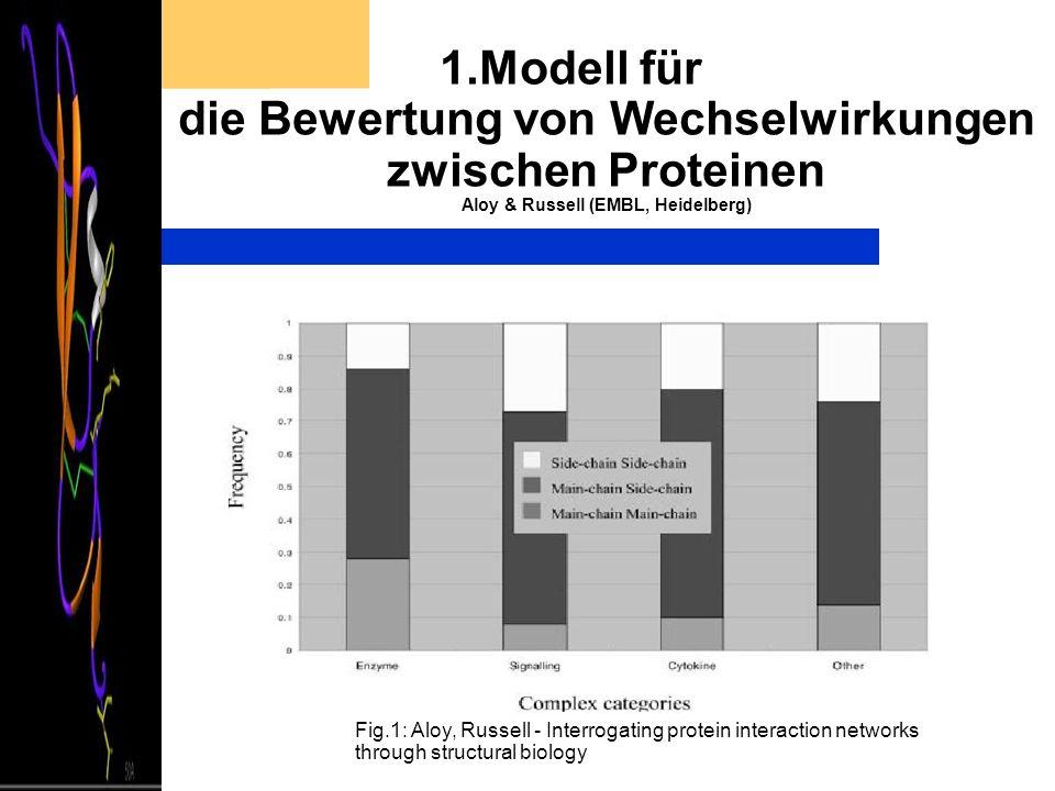 1.Modell für die Bewertung von Wechselwirkungen zwischen Proteinen Aloy & Russell (EMBL, Heidelberg) Fig.1: Aloy, Russell - Interrogating protein inte