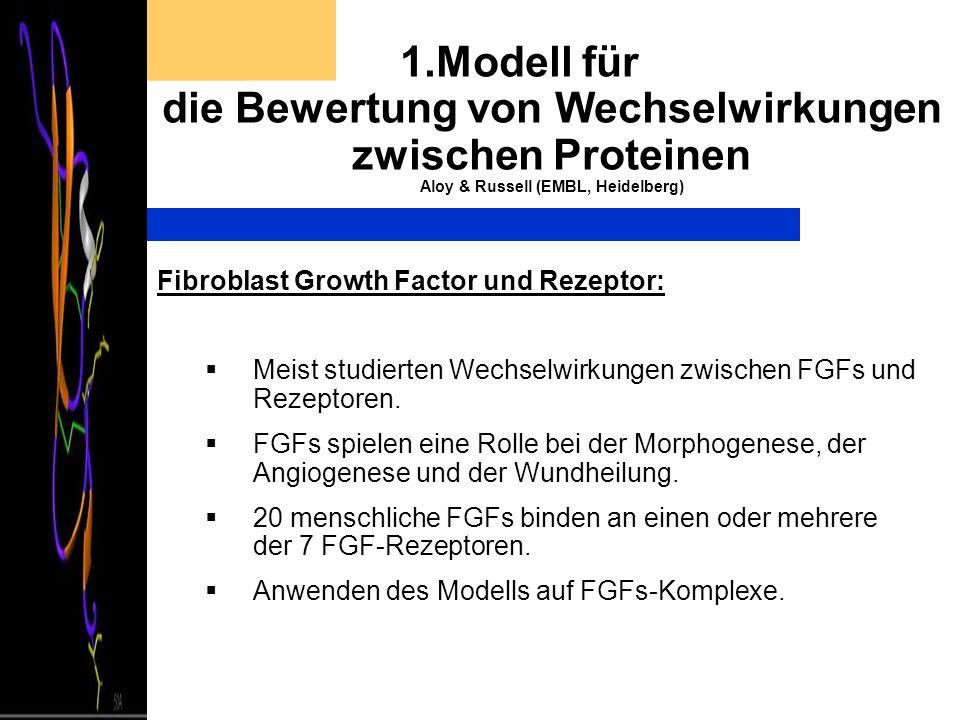1.Modell für die Bewertung von Wechselwirkungen zwischen Proteinen Aloy & Russell (EMBL, Heidelberg) Fibroblast Growth Factor und Rezeptor: Meist stud