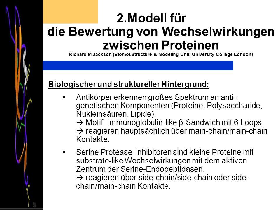 2.Modell für die Bewertung von Wechselwirkungen zwischen Proteinen Richard M.Jackson (Biomol.Structure & Modeling Unit, University College London) Bio