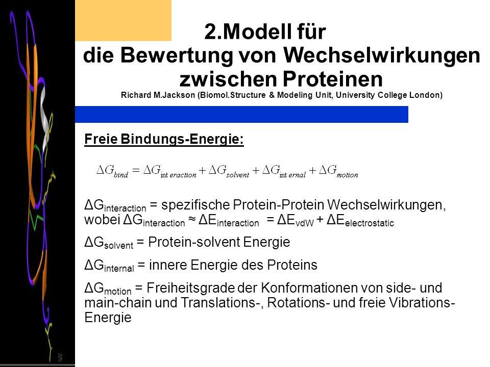 2.Modell für die Bewertung von Wechselwirkungen zwischen Proteinen Richard M.Jackson (Biomol.Structure & Modeling Unit, University College London) Fre
