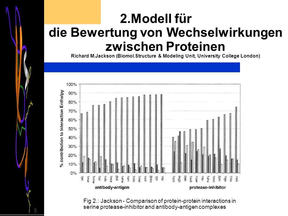 2.Modell für die Bewertung von Wechselwirkungen zwischen Proteinen Richard M.Jackson (Biomol.Structure & Modeling Unit, University College London) Fig