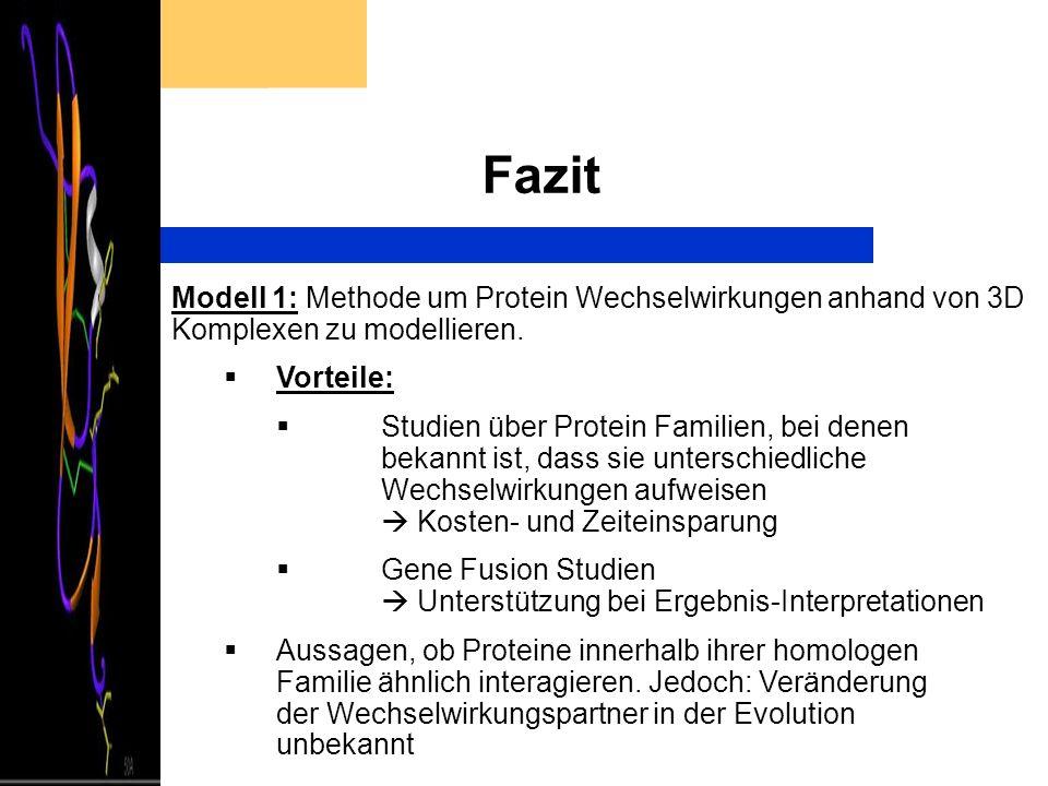 Fazit Modell 1: Methode um Protein Wechselwirkungen anhand von 3D Komplexen zu modellieren. Vorteile: Studien über Protein Familien, bei denen bekannt