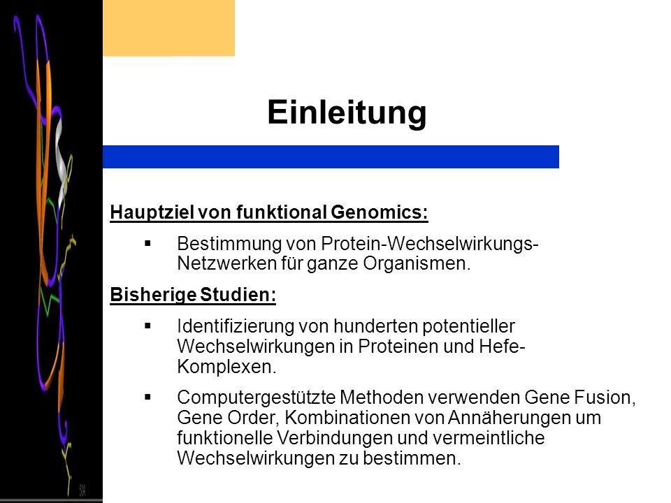 Einleitung Hauptziel von funktional Genomics: Bestimmung von Protein-Wechselwirkungs- Netzwerken für ganze Organismen. Bisherige Studien: Identifizier