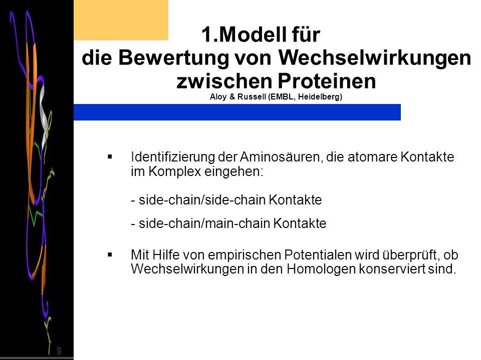 1.Modell für die Bewertung von Wechselwirkungen zwischen Proteinen Aloy & Russell (EMBL, Heidelberg) Identifizierung der Aminosäuren, die atomare Kont