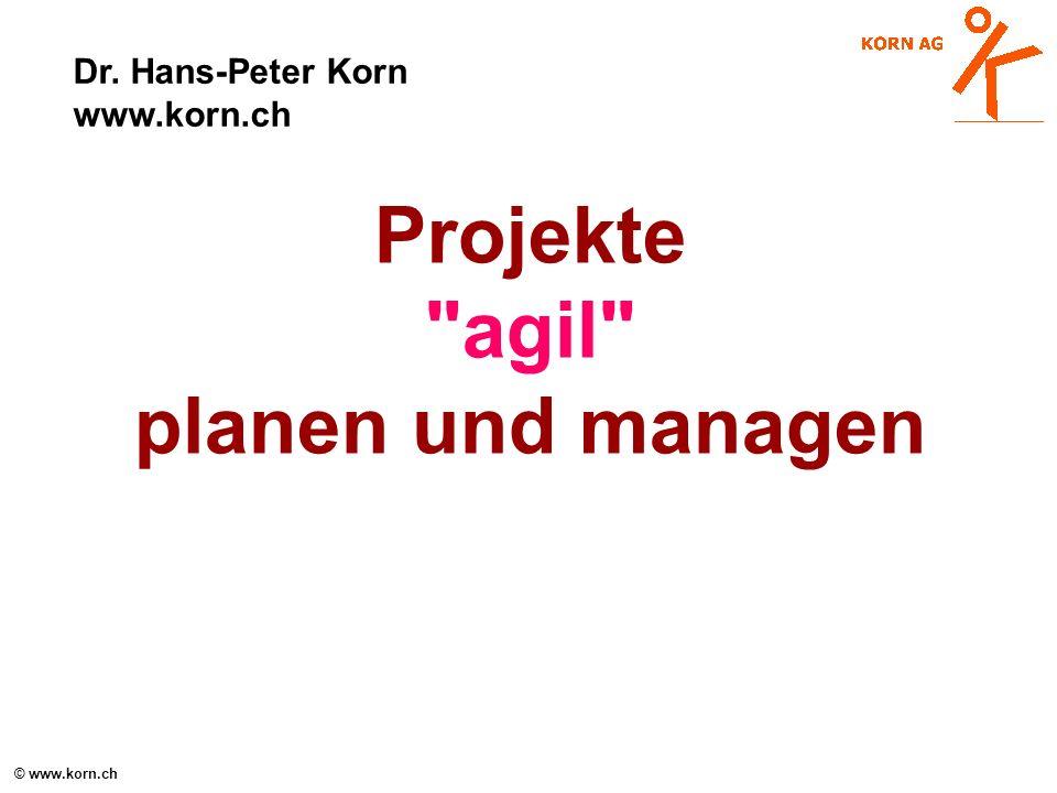 © www.korn.ch NAVIGATOR: Grundüberlegungen zum Managen Soziale Handlungssysteme = Komplexe Adaptive Systeme : Wie managen?.
