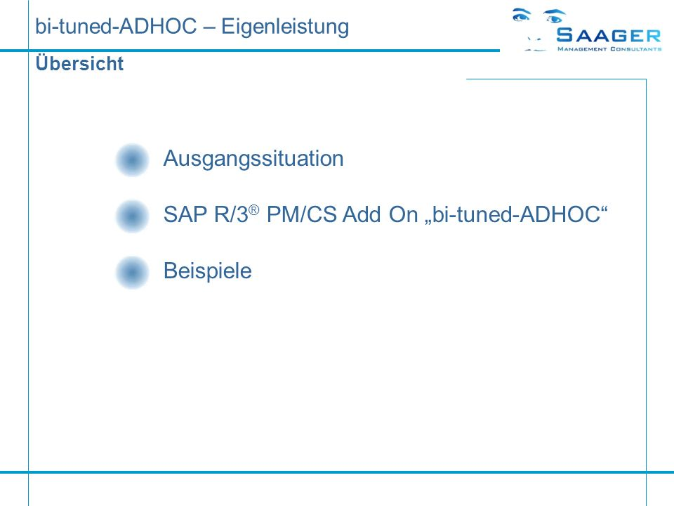 bi-tuned-ADHOC – Eigenleistung Übersicht Ausgangssituation SAP R/3 ® PM/CS Add On bi-tuned-ADHOC Beispiele