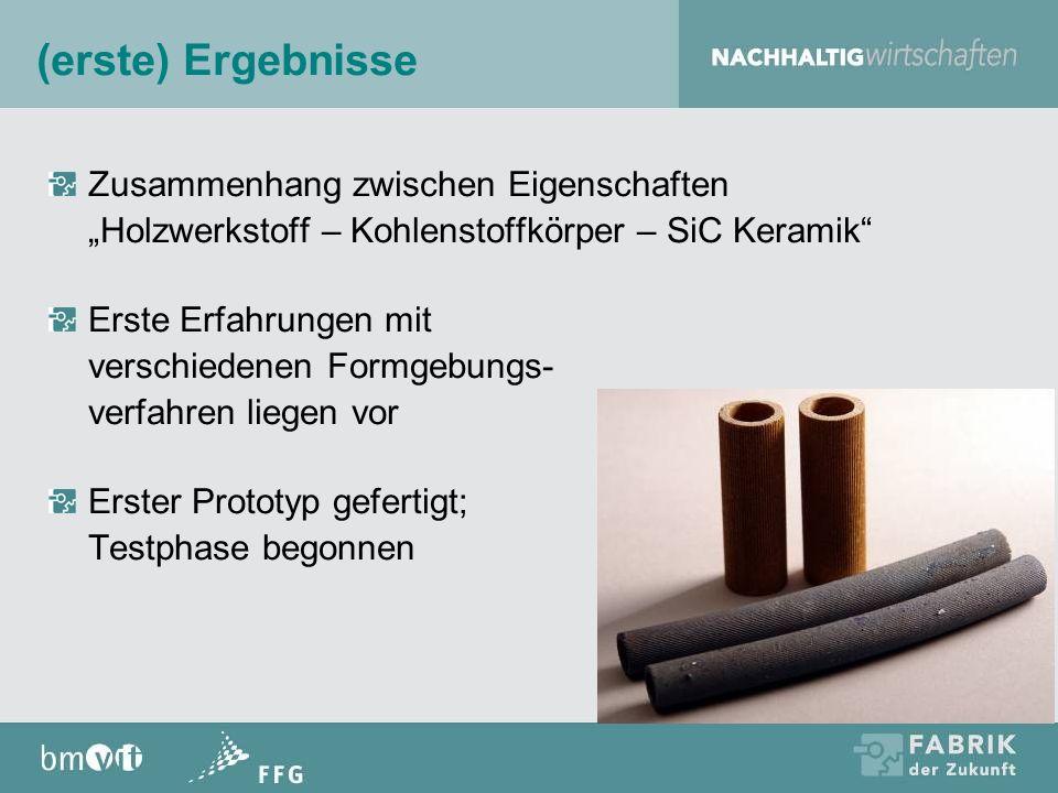 (erste) Ergebnisse Zusammenhang zwischen Eigenschaften Holzwerkstoff – Kohlenstoffkörper – SiC Keramik Erste Erfahrungen mit verschiedenen Formgebungs