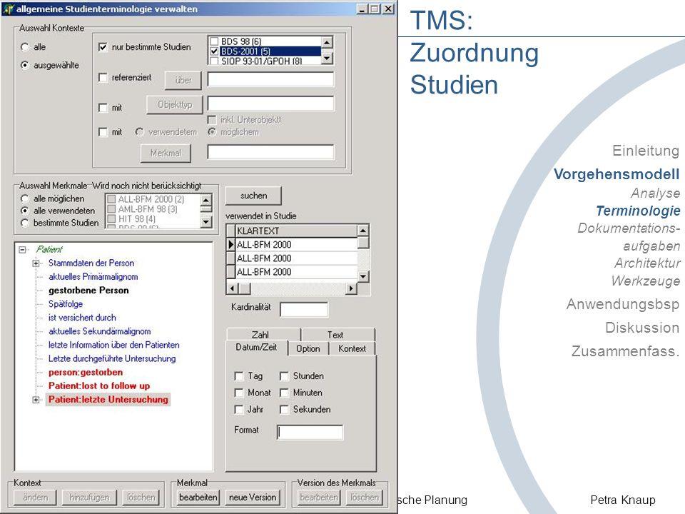 © Uni Heidelberg / Abt. Medizinische Informatik Systematische Planung Petra Knaup TMS: Zuordnung Studien Einleitung Vorgehensmodell Analyse Terminolog