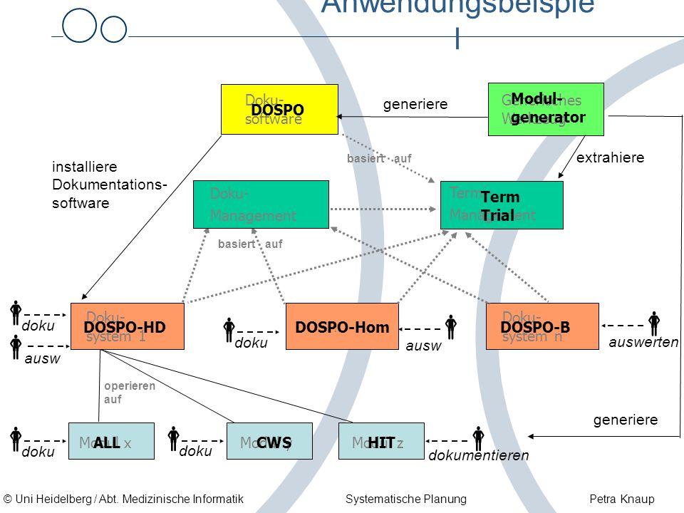 © Uni Heidelberg / Abt. Medizinische Informatik Systematische Planung Petra Knaup Anwendungsbeispie l … Doku- system n Generisches Werkzeug Doku- syst