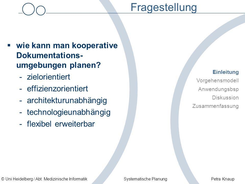 © Uni Heidelberg / Abt. Medizinische Informatik Systematische Planung Petra Knaup Fragestellung wie kann man kooperative Dokumentations- umgebungen pl