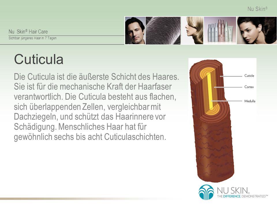 Nu Skin ® Hair Care Sichtbar jüngeres Haar in 7 Tagen Nu Skin ® Cuticula Die Cuticula ist die äußerste Schicht des Haares.