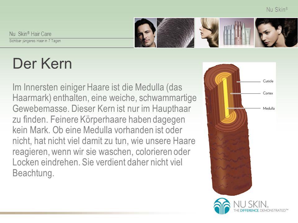 Nu Skin ® Hair Care Sichtbar jüngeres Haar in 7 Tagen Nu Skin ® Der Cortex Das Haarmark ist umschlossen vom Cortex, der dem Haar seine speziellen Eigenschaften wie Elastizität und Locken verleiht.