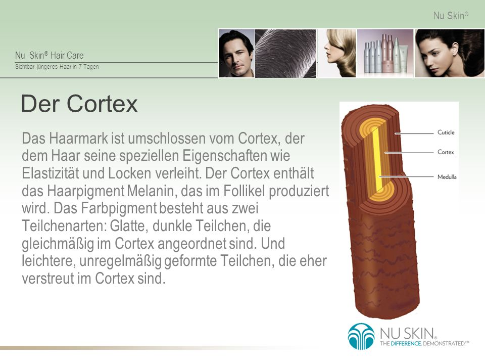 Nu Skin ® Hair Care Sichtbar jüngeres Haar in 7 Tagen Nu Skin ® Rich Conditioner Hauptbestandteile Sheabutter: Ähnelt den Haarlipiden und füllt geschädigte Stellen in der Cuticula auf, um das Haar zu kräftigen.