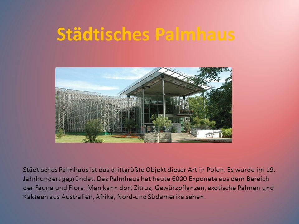 Städtisches Palmhaus Städtisches Palmhaus ist das drittgrößte Objekt dieser Art in Polen. Es wurde im 19. Jahrhundert gegründet. Das Palmhaus hat heut