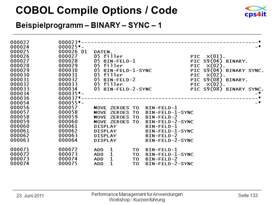COBOL Compile Options / Code Beispielprogramm – BINARY – SYNC – 1 23. Juni 2011Seite 133 Performance Management für Anwendungen Workshop / Kurzeinführ