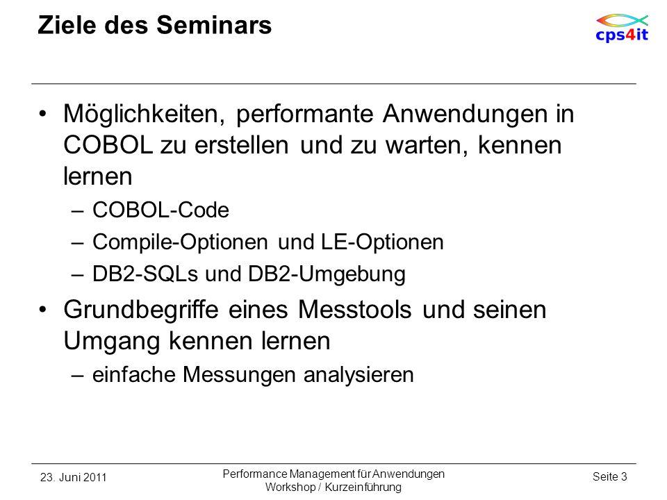 Ziele des Seminars Möglichkeiten, performante Anwendungen in COBOL zu erstellen und zu warten, kennen lernen –COBOL-Code –Compile-Optionen und LE-Opti