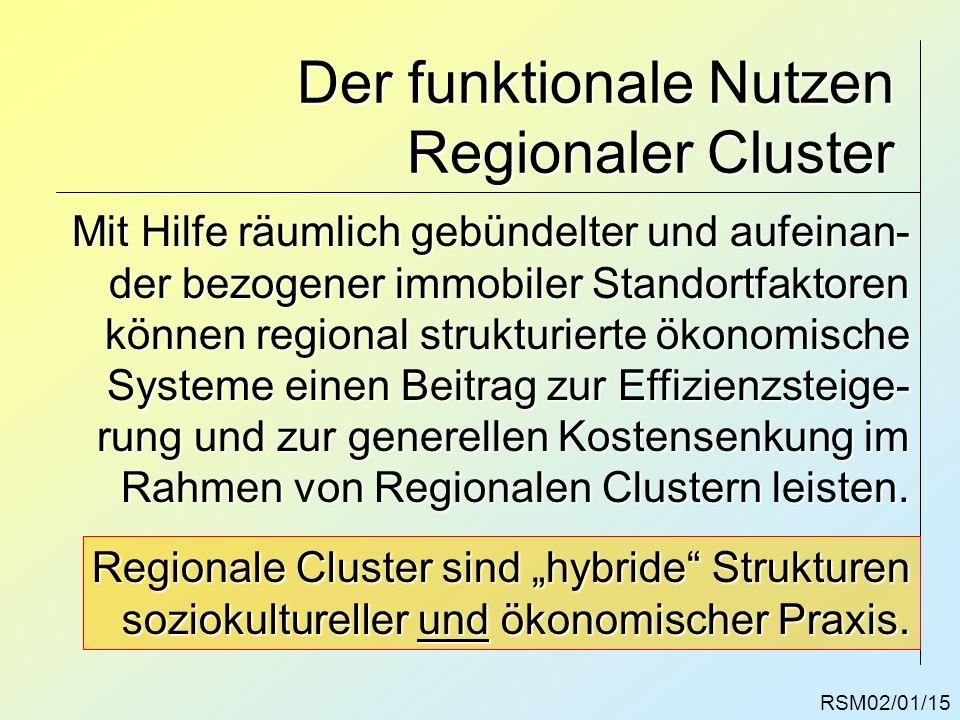 RSM02/01/15 Der funktionale Nutzen Regionaler Cluster Mit Hilfe räumlich gebündelter und aufeinan- der bezogener immobiler Standortfaktoren können reg