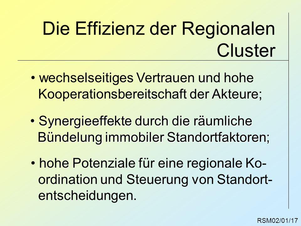 RSM02/01/17 Die Effizienz der Regionalen Cluster wechselseitiges Vertrauen und hohe Kooperationsbereitschaft der Akteure; Synergieeffekte durch die rä