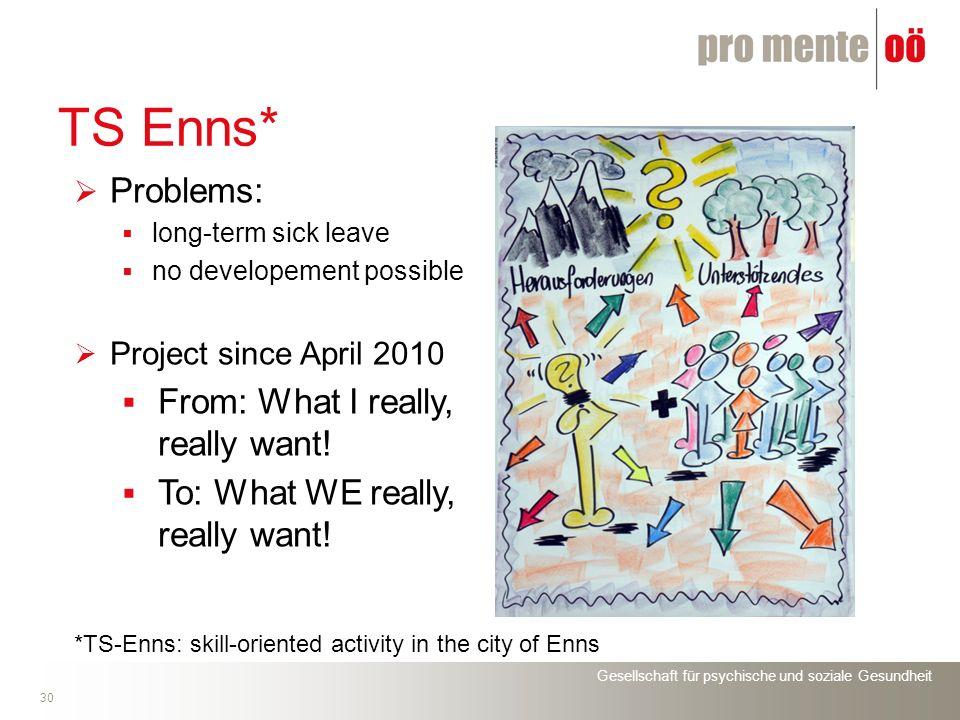 Gesellschaft für psychische und soziale Gesundheit 30 TS Enns* Problems: long-term sick leave no developement possible Project since April 2010 From: