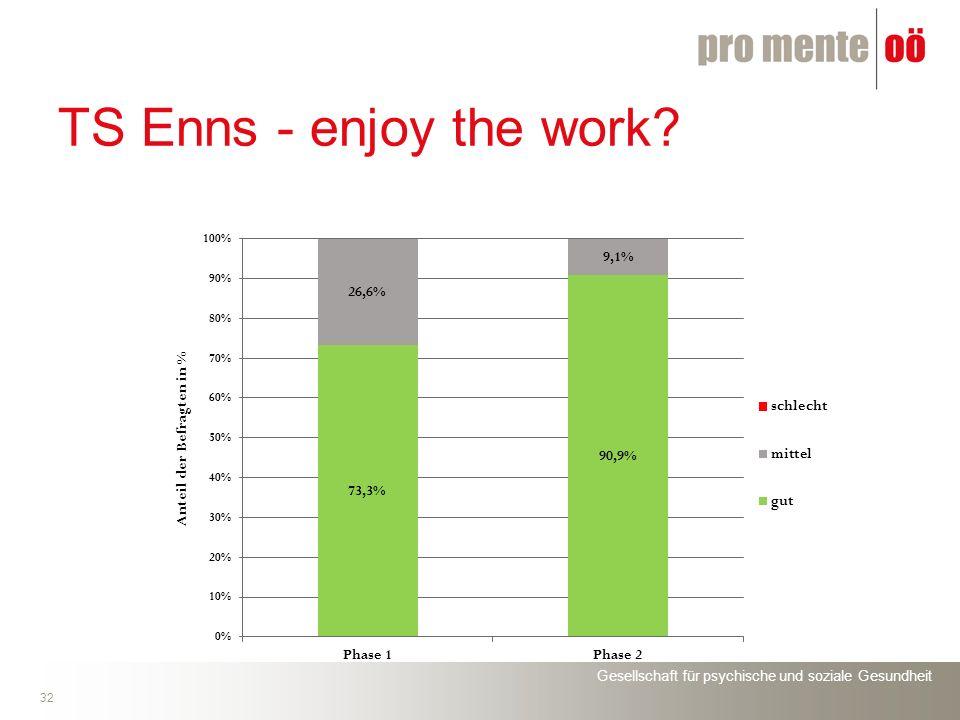 Gesellschaft für psychische und soziale Gesundheit 32 TS Enns - enjoy the work?