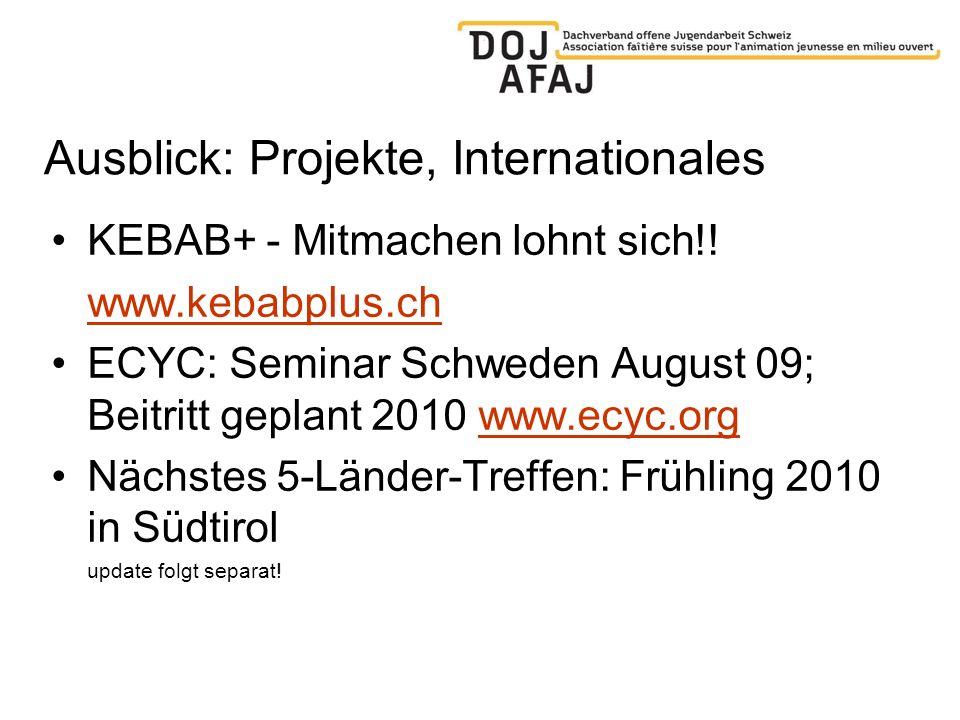 Ausblick: Projekte, Internationales KEBAB+ - Mitmachen lohnt sich!! www.kebabplus.ch ECYC: Seminar Schweden August 09; Beitritt geplant 2010 www.ecyc.