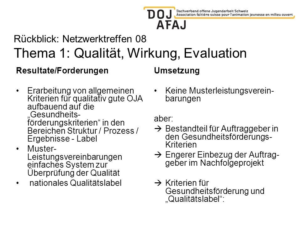 Rückblick: Netzwerktreffen 08 Thema 1: Qualität, Wirkung, Evaluation Resultate/Forderungen Erarbeitung von allgemeinen Kriterien für qualitativ gute O
