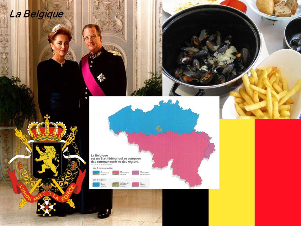 33 Politisches System Schweiz Andreas Ladner 33 La Belgique