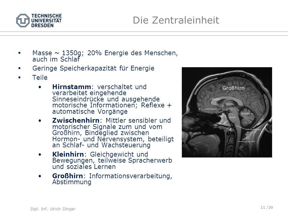 Dipl. Inf. Ulrich Dinger /39 Die Zentraleinheit Masse ~ 1350g; 20% Energie des Menschen, auch im Schlaf Geringe Speicherkapazität für Energie Teile Hi