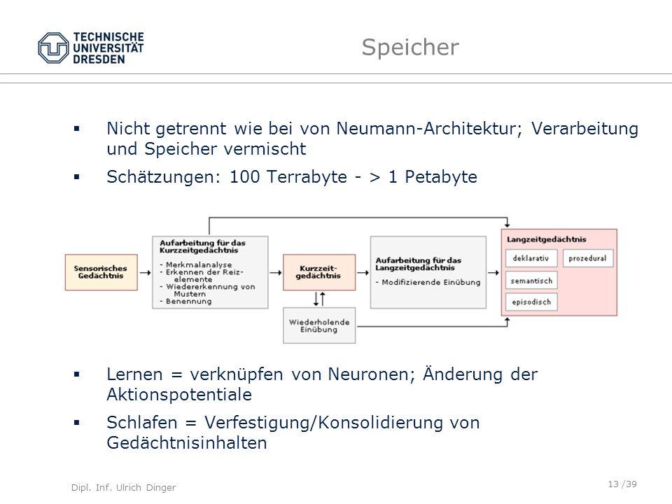 Dipl. Inf. Ulrich Dinger /39 Speicher Nicht getrennt wie bei von Neumann-Architektur; Verarbeitung und Speicher vermischt Schätzungen: 100 Terrabyte -